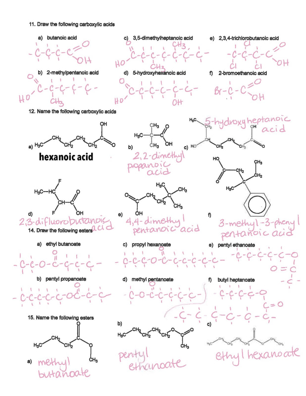 Blog Archives Ms McLartys Classes – Functional Group Worksheet
